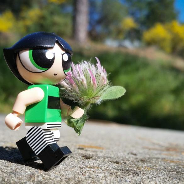 Buttercup on a mission - Teddi Deppner @teddi_toyworld