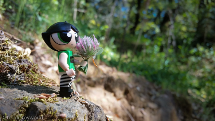Buttercup in the woods - Teddi Deppner @teddi_toyworld