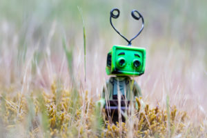 Walking in the tall grass - @teddi_toyworld