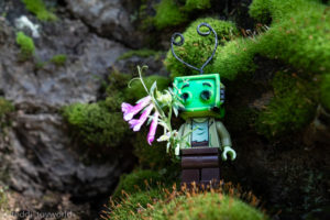 Flowers and moss - @teddi_toyworld