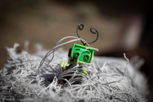 Tangled - @teddi_toyworld