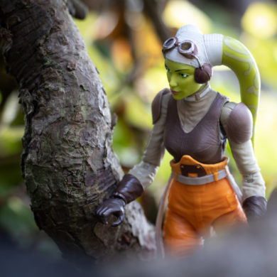 Featured Image: Hera in the woods - @teddi_toyworld