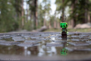 Reflection in the forest - @teddi_toyworld