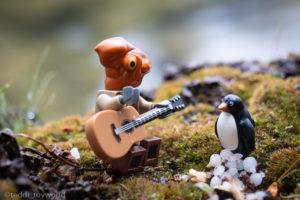 Ackchu serenades the penguin - @teddi_toyworld